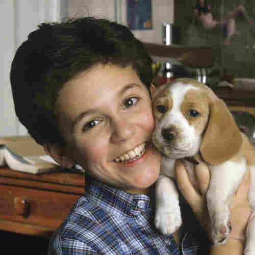 Fred Savage: A Child Star Makes Good, With Less Than Wholesome Comedies