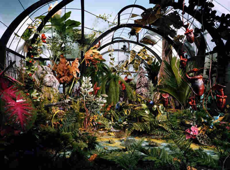 Botanic Garden, 2008