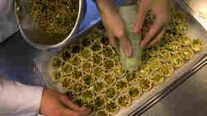 Students prepare mealworm quiches at the Rijn IJssel school for chefs in Wageningen, Netherlands.