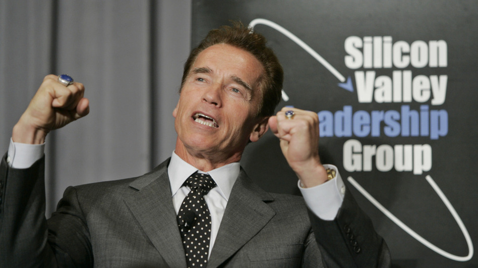 Former California Gov. Arnold Schwarzenegger, seen here in 2007, once rescued a swimmer in distress.  (AP)