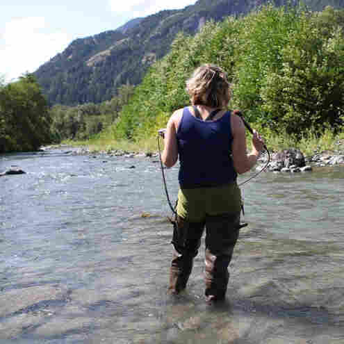 Falling in Love with the Elwha