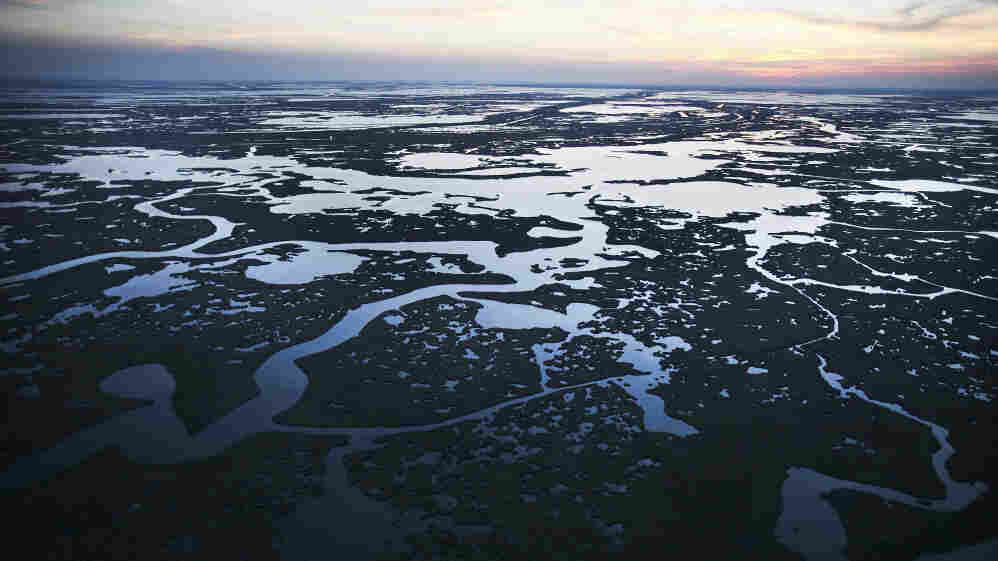 Pictured here on April 13, 2011, Barataria Bay — part of Louisiana's Barataria Basin — was one of the hardest hit areas in the aftermath of the Deepwater Horizon oil rig explosion. Today, obvious signs of the spill have faded, but communities are still reeling from its effects.