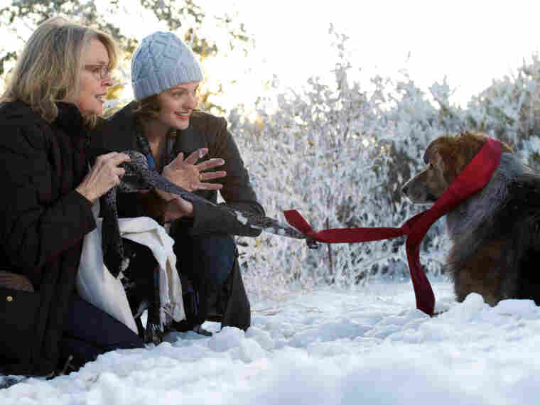 Beth (Diane Keaton) and her daughter (Elisabeth Moss) rescue an injured dog from the side of the highway. Beth's husband (Kevin Kline) later loses the beloved pet, an event co-writer Meg Kasdan says is inspired by a real-life incident.