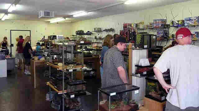 """Customers look at the inventory in Ken """"The Bug Guy"""" MacNeil's pet store in Tucson, Ariz."""