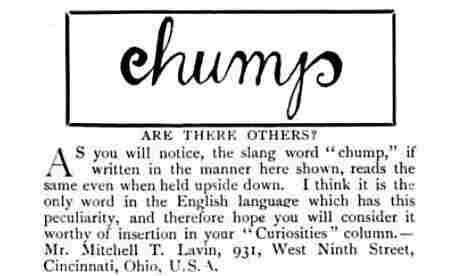 """""""chump"""""""