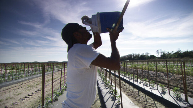 A migrant Florida tomato grower and member of the Coalition of Immokalee Workers drinks from a jug of water. As part of a larger discussion of societal thinking about debt, Payback looks at the sometimes harsh treatment by companies of migrant workers.