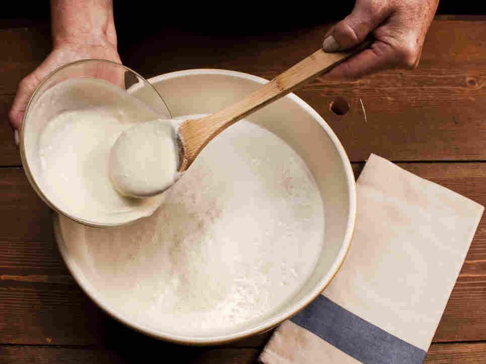 To make yogurt with an heirloom starter, add freeze-dried starter or a spoonful of yogurt to fresh milk.