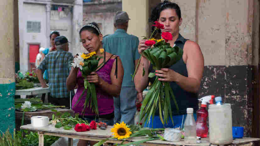 Two self-employed florists prepare bunches of flowers in Havana last year. The Cuban government is stepping up economic reforms and estimates that in four or five years, nearly half the workforce will be employed in the private sector.