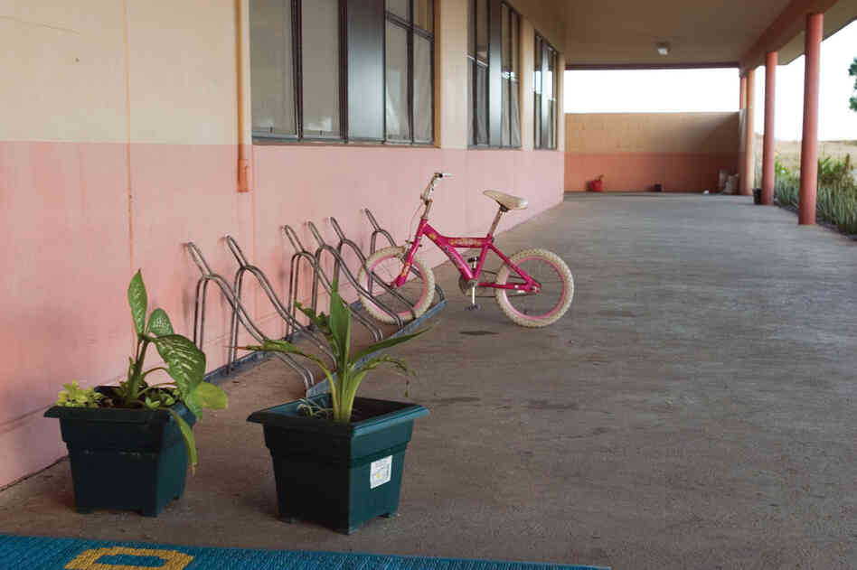 Pink Bicycle, Naval Station, 2006