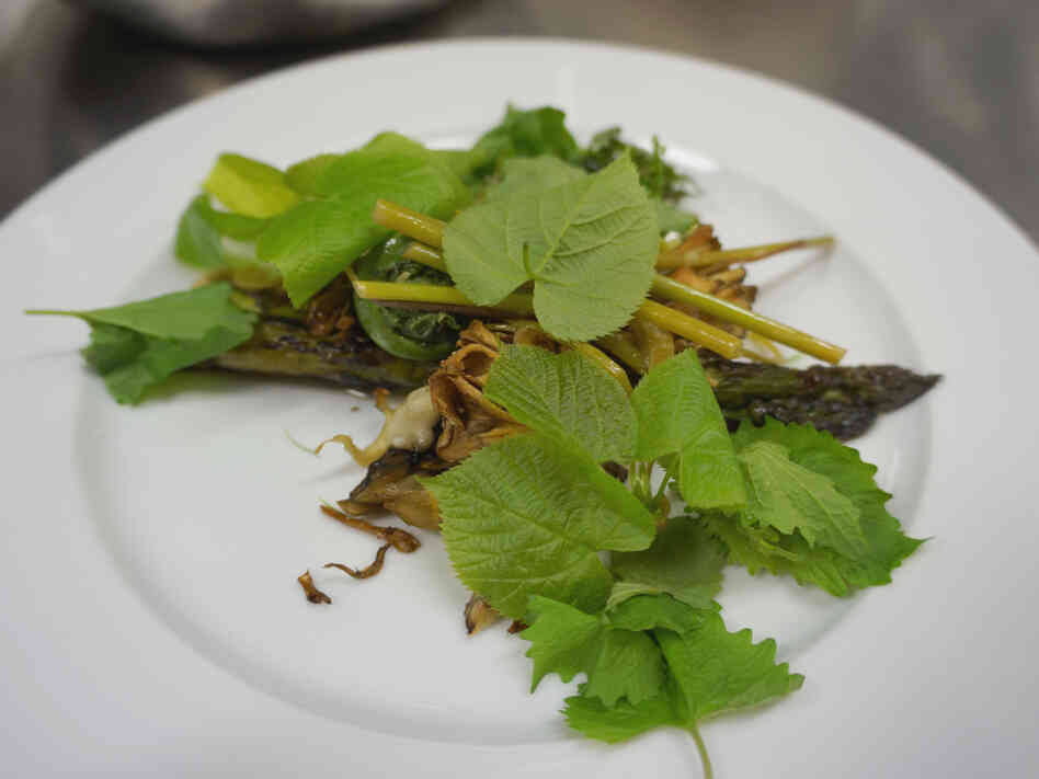 In another era, this plate of Spanish mackerel topped with wild tamarack, basswood leaves, garlic mustard, fiddlehead ferns, and knotweed might seem cheap. Not anymore.
