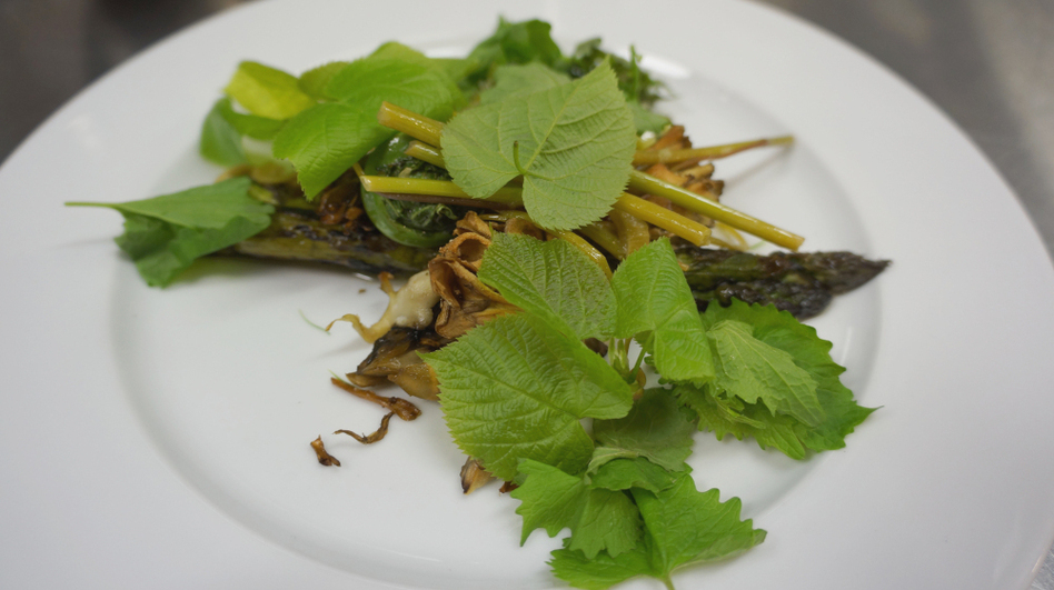 In another era, this plate of Spanish mackerel topped with wild tamarack, basswood leaves, garlic mustard, fiddlehead ferns, and knotweed might seem cheap. Not anymore. (Courtesy of Leif Hedendal)