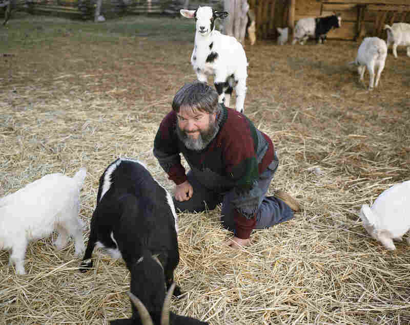 Clinton, Tenn. 2008. This man works at the Museum of Appalachia.  He is affectionally known as the deer man. ... His friend had passed away the day before and he went to be with the goats to feel better. They loved him and jumped all over him.