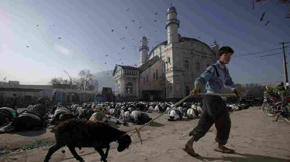 The Afghan government wants Muslim preachers to tone down sermons that often criticize the presence of American troops and praise the Taliban. Here, an Afghan youth drags his sheep past a group of men praying at a mosque in Kabul in November 2011.
