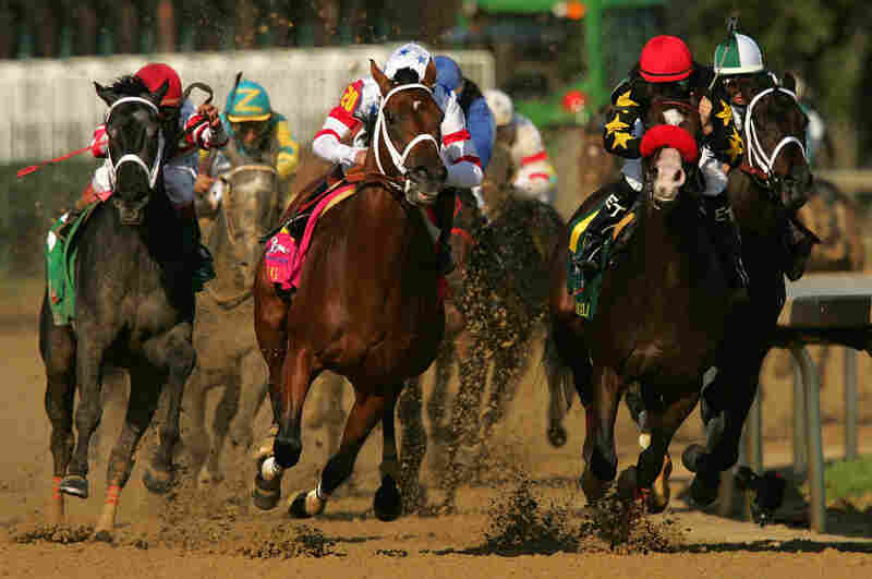 Eight Belles (far left) broke both of her front ankles after finishing second in the 134th Kentucky Derby in May 2008. She was later euthanized.