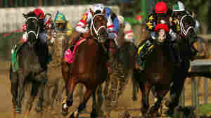 Horse Racing: America's Most Dangerous Game?