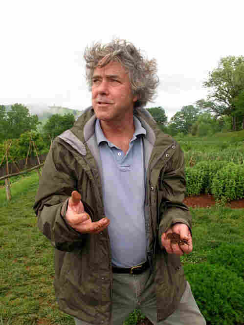 Peter Hatch has been Monticello's director of gardens and grounds since 1977. When he first came to the estate, this garden didn't exist: Forty percent of it was a parking lot for tourists; the rest was planted with flowers. It took years of careful archaeological work and research to reconstruct the garden according to Jefferson's design.