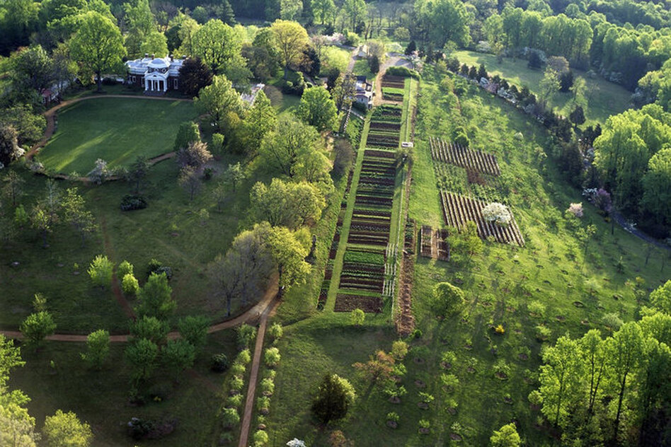 Thomas Jefferson's garden at Monticello served as an experimental laboratory for garden vegetables from around the world. (Leonard Phillips/Thomas Jefferson Foundation at Monticello)
