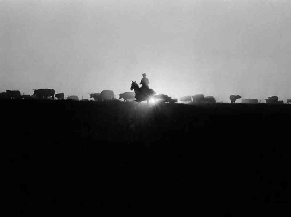 "Dec. 17, 1970: ""Roundup time on a ranch in New Mexico,"" began the caption on a business article about farming and the recession. The article concluded with a word of caution: ""The watchword for the great feed grain-livestock industry in 1971 is uncertainty. High risk is normal, but it will be 'superhigh' risk this year."""