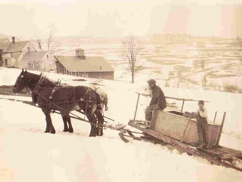 Perkins Flint and son Gardner collect sap, Braintree Hill, Vt., circa 1938