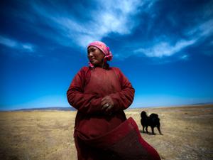 "Herder Bat-Erdene Badam's mother. Khishigdelger Adiya, surveys the land around her home. She stands near what she described as a ""sacred well"" that has recently gone dry."