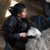 Workers brush cashmere goats in South Gobi on Bat-Erdene Badam's family farm. Cashmere wool, milk and meat are the main commodities for Mongolia's herders.