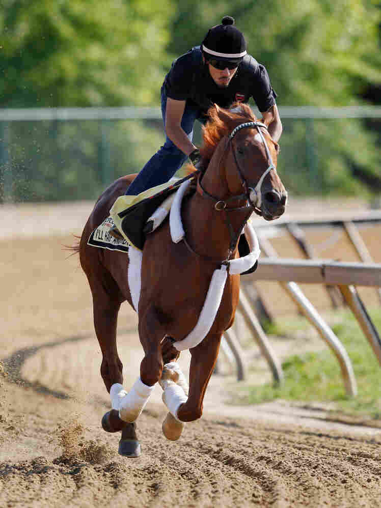 Exercise rider Jonny Garcia takes I'll Have Another over the track at Pimlico Race Course in Baltimore, Md., Thursday. The colt has a chance to win the second leg of the Triple Crown in the 137th Preakness Stakes Saturday.