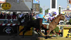 Derby Winner I'll Have Another Captures Preakness