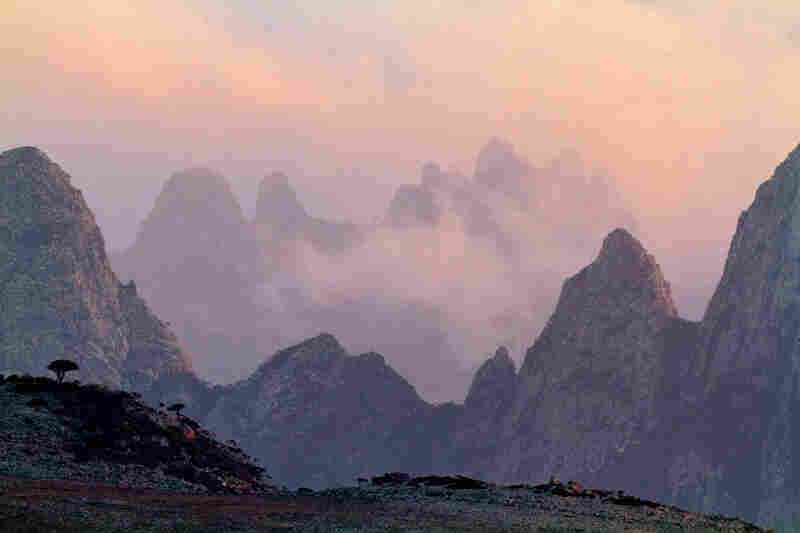 Ancient periods of volcanic activity built the Hajhir Mountains, where rugged granite peaks rise to nearly 5,000 feet. Nightly clouds provide moisture for plant life that's among the most diverse in Asia.