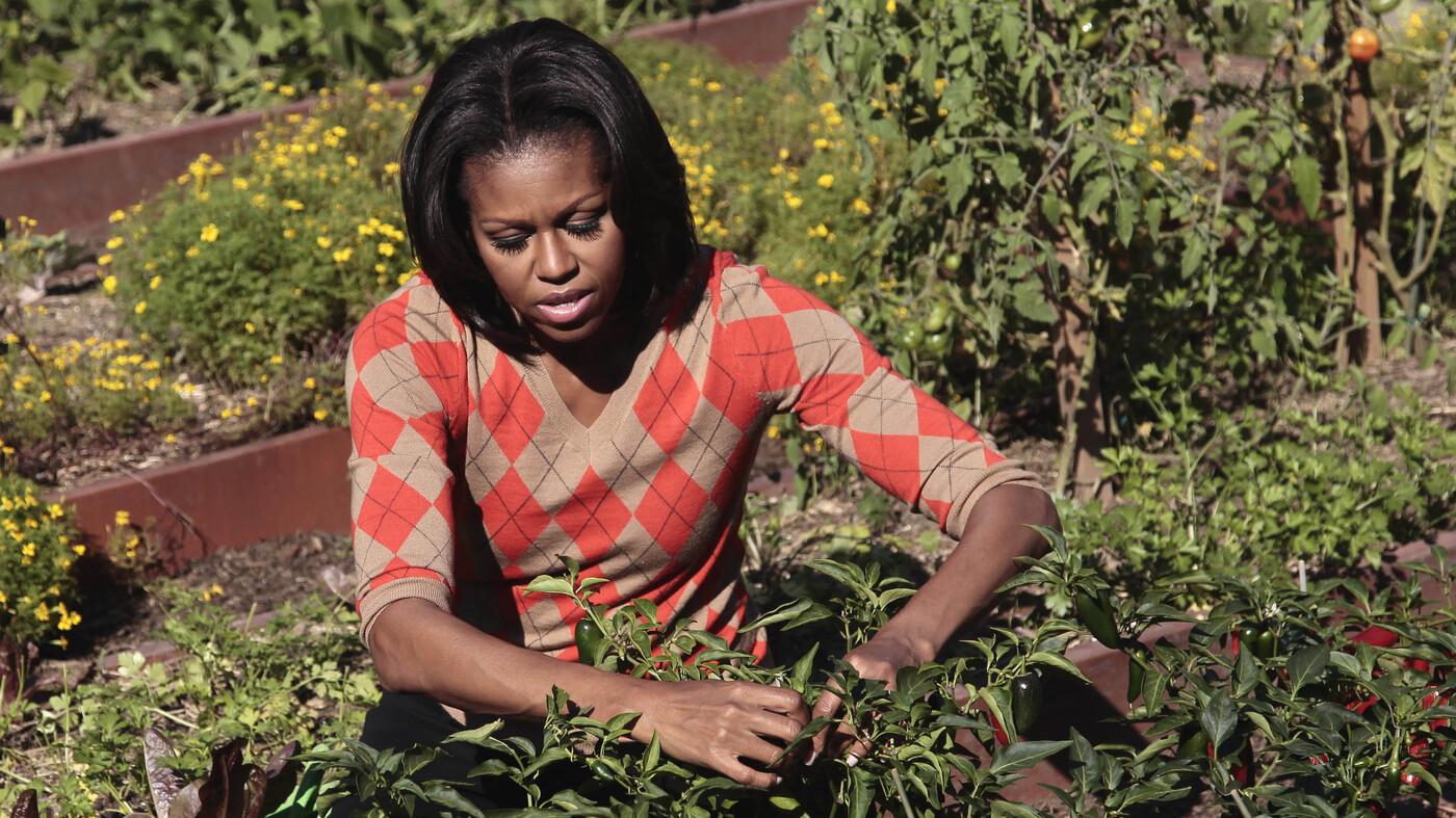 Michelle Obama Kitchen Garden The First Lady Cultivates American Grown Gardening Npr