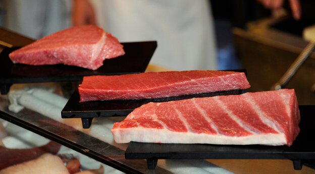 A Tokyo sushi restaurant displays blocks of fat meat tuna cut out from a 269kg bluefin tuna.
