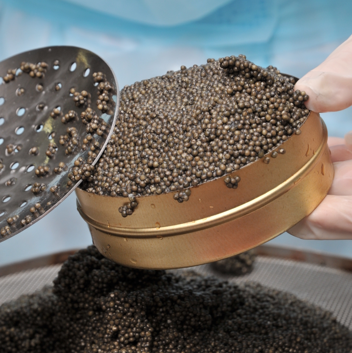 Caviar -- an expensive delicacy that's not much to look at.