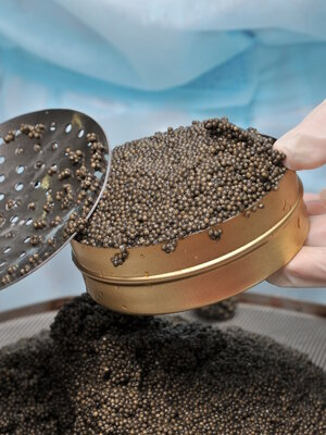 Caviar — an expensive delicacy that's not much