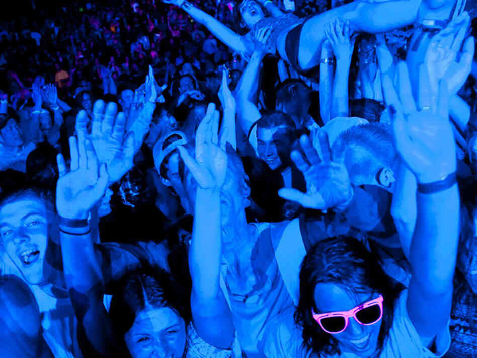 crowd dancing at the detroit electronic music festival
