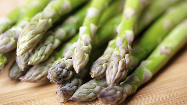 The subject of an opera in Boston last week (iStockphoto.com)