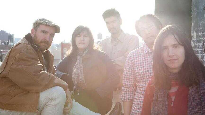 The Magnetic Fields