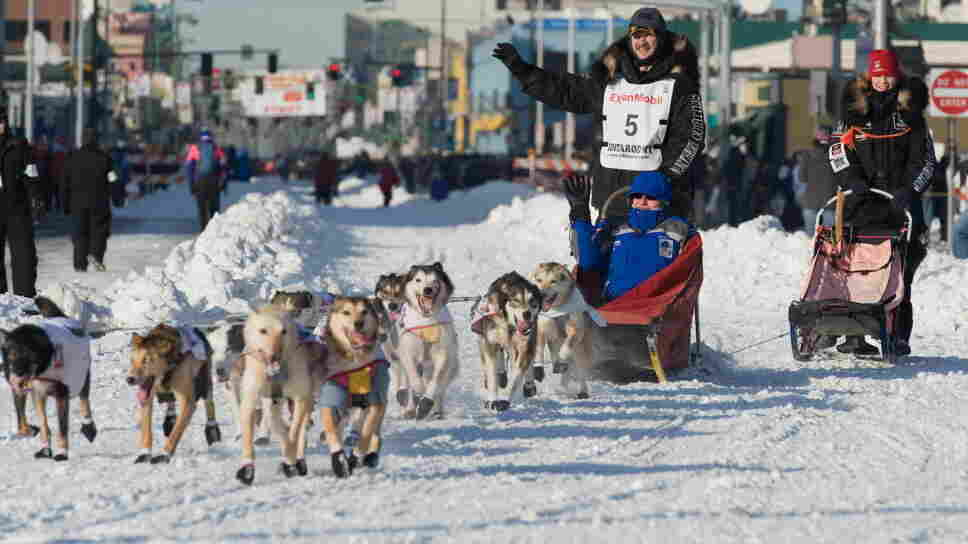 High fashion in Anchorage. (Just kidding! It's a photo from the 2011 Iditarod.)