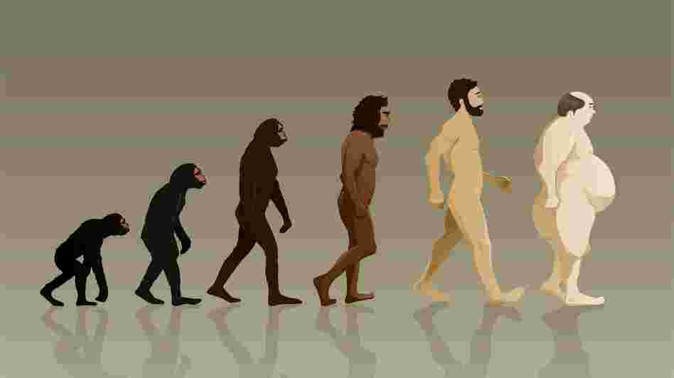 "Some physicians say the theory of ""evolutionary medicine"" can help guide the treatment of modern ailments like obesity."