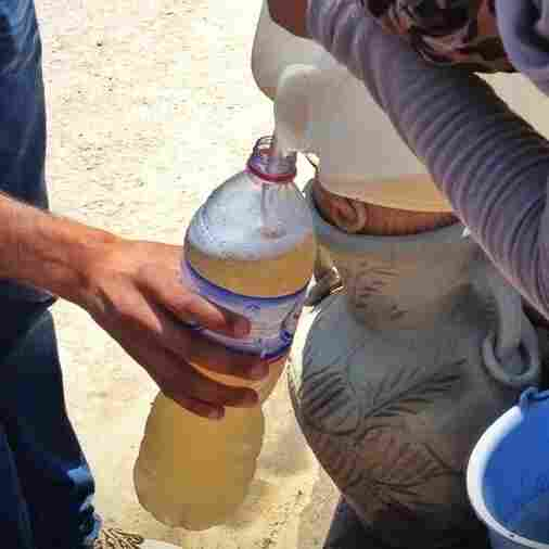 Road Brew: How To Make Hooch With Tunisian Date Juice (Or Try)