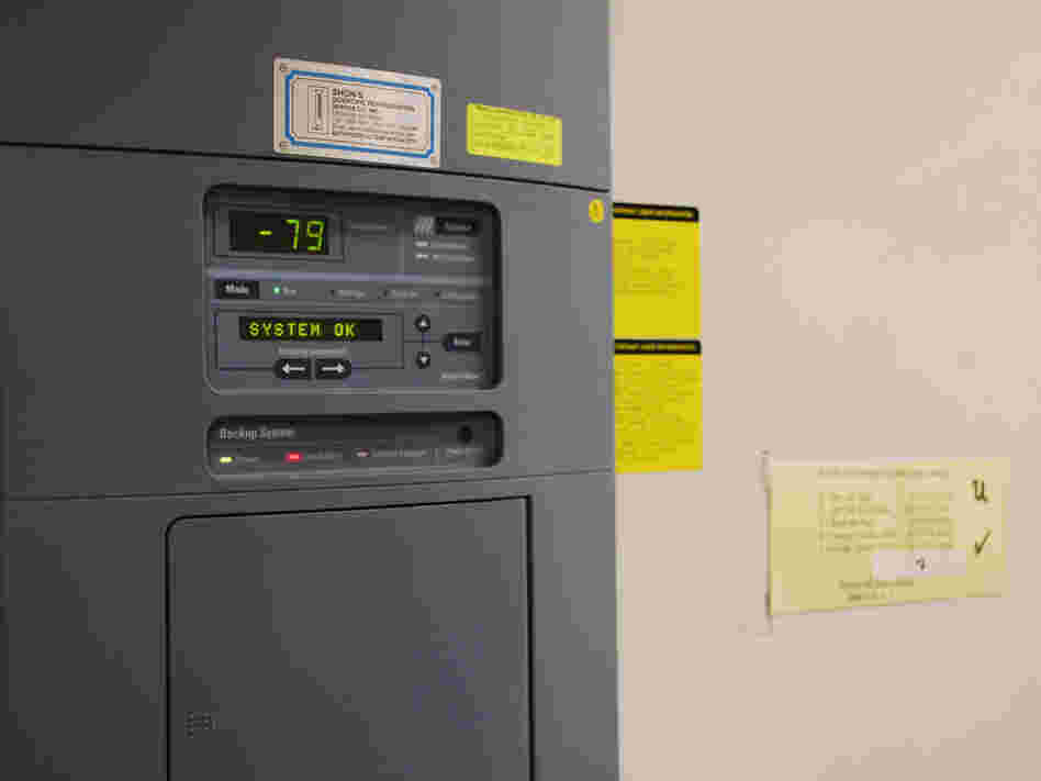 The control panel for freezer U, where a malfunction led to the thawing of brains used in autism research. When operating properly, the freezer temperature is minus 79 degrees Celsius.