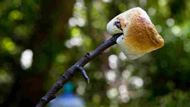 Joe Palca's perfectly toasted marshmallow.