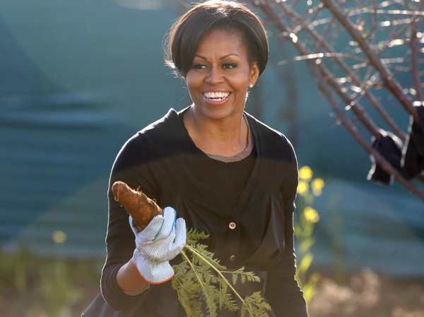 American Grown The Story Of The White House Kitchen Garden And