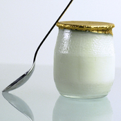 "Yogurt is produced by the bacterial fermentation of milk. ""Bacteria in our gut enable us to live,"" says author Sandor Katz. ""We could not survive without bacteria."""