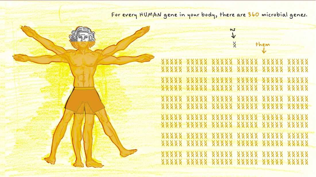 For every human gene in your body there are 360 microbial genes.