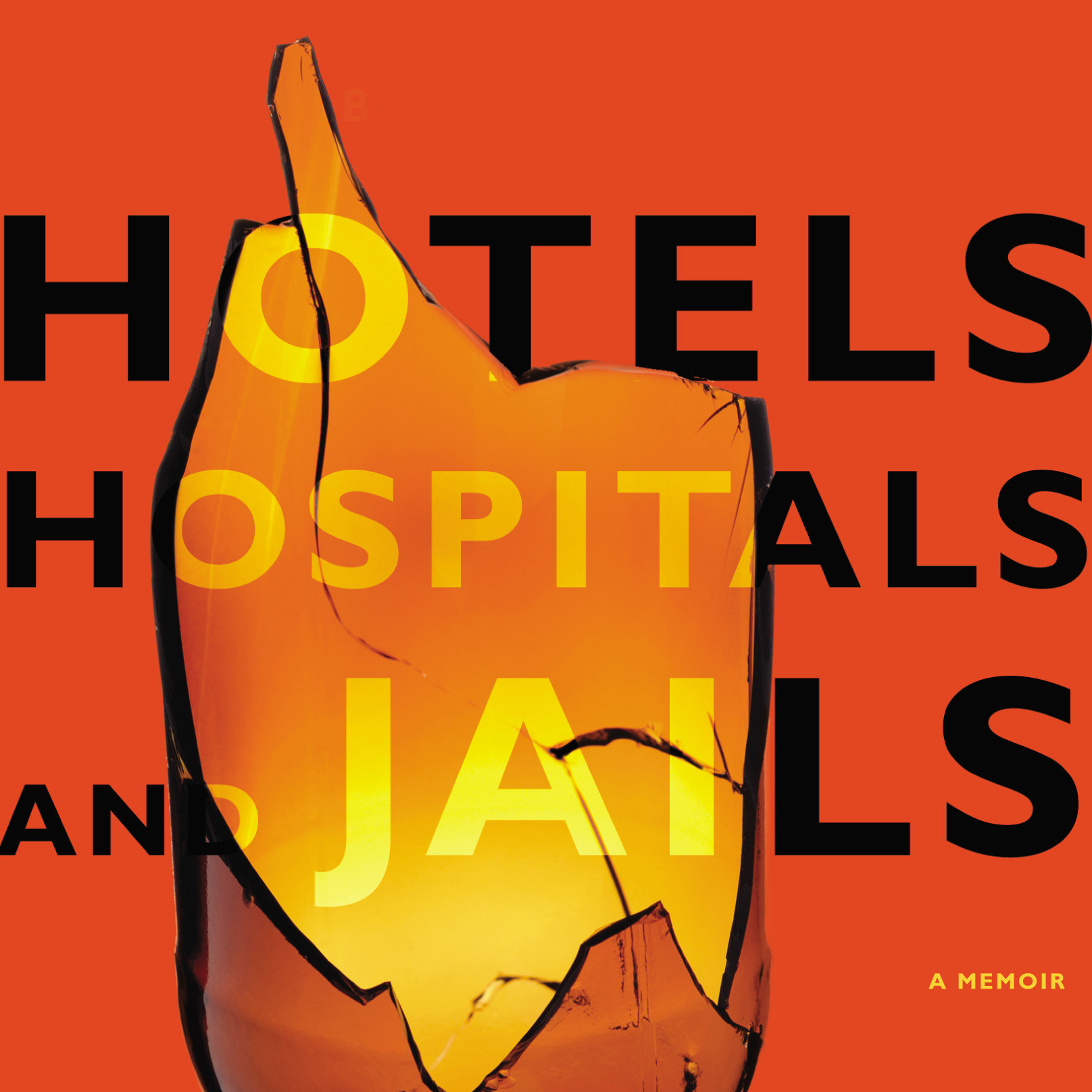 Hotels, Hospitals, and Jails book cover