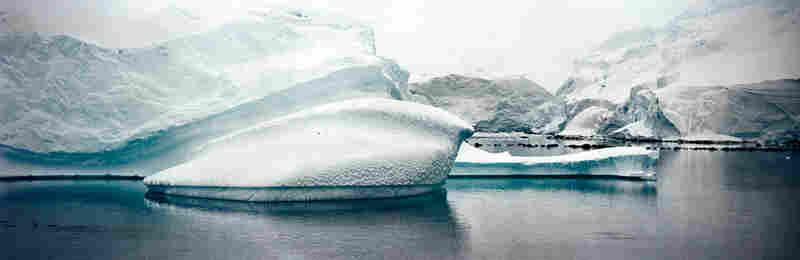 Iceberg and Glacier, Antarctic Peninsula, December 2007