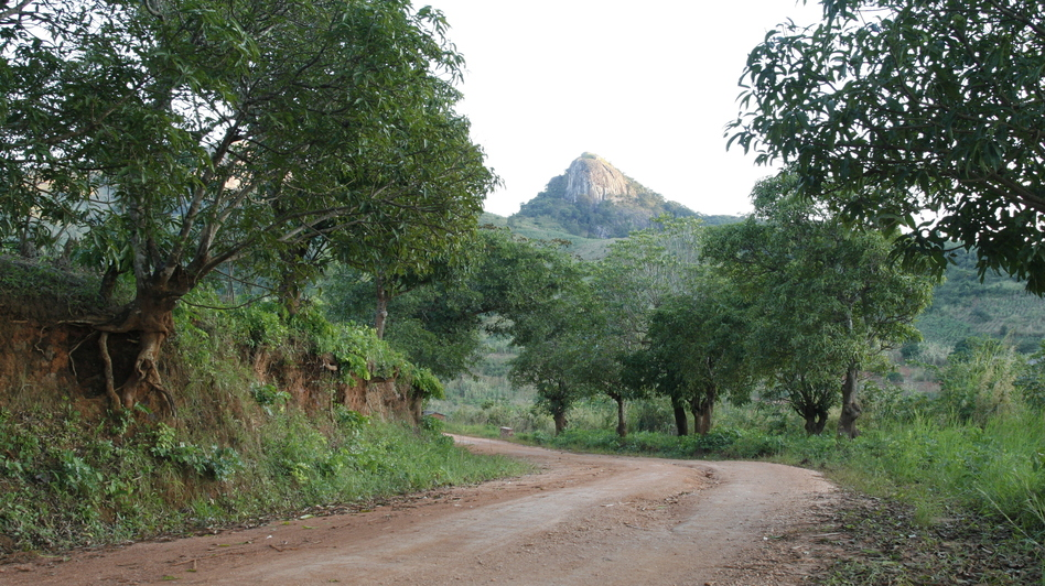 Getting to the village of Ruasse, in northern Mozambique, involved driving 60 miles on this road. Paved roads are scarce in this country. (NPR)
