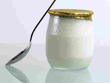 """Yogurt is produced by the bacterial fermentation of milk. """"Bacteria in our gut enable us to live,"""" says author Sandor Katz. """"We could not survive without bacteria."""""""