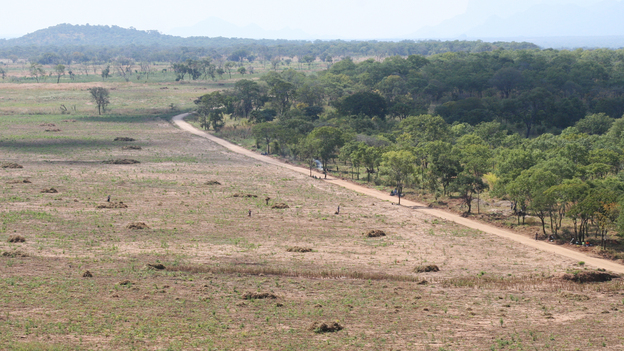 Rei do Agro cleared trees from this land over the past 18 months. It previously looked like the land on the right. (Belchion Lucas for NPR)