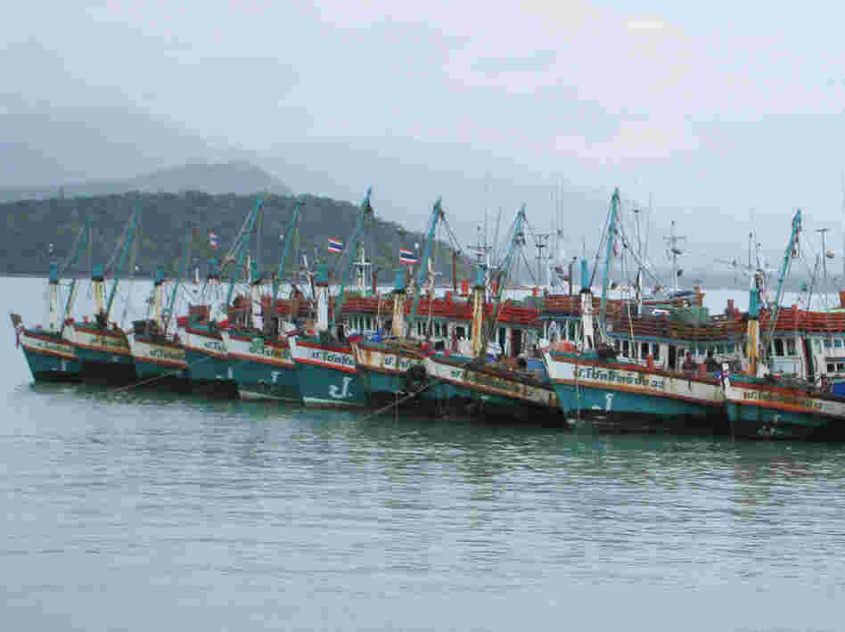 Thailand has a huge fishing fleet, but the industry is chronically short of fishermen. Human traffickers have recruited unsuspecting workers from Cambodia and Myanmar who end up spending months or even years at sea.