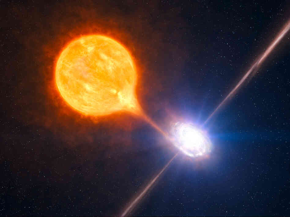 A black hole and its massive pair of jets is seen in association with a growing microquasar in this artist's impression based on multiple sources of telescope data.
